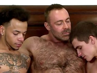 Hairy: 2616 Videos