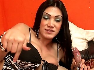 Dirty big tits shemale sucks his dick and get hers swallowed